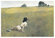 ART PRINT POSTER - Christina's World by Andrew Wyeth 11x14