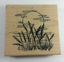 Just For Fun TROPICAL SUNSET Beach Rubber Stamp Wood Mount Background