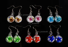 Wholesale 6Pair round Flower Murano Glass Silver P Earrings Jewelry Wedding