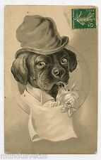 Portrait de chien gaufré . Chapeau . Dog . Hat .Embossed . собака . 犬 . 狗