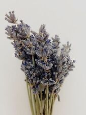 Dried Lavender Fragrant Flowers Perfume Potpourri Bunch - Home Grown