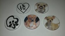 5 Chihuahua Pin Button Badges 25mm I love heart dog puppy hand bag