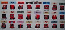 LEGO CUSTOM MINIFIG GLOSSY DECAL SET DC'S RED LANTERN CORPS 24 FIGURE LOT