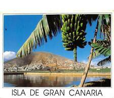 Spain Isla de Gran Canaria, Mountain of Guia and Galdar, Banana crops