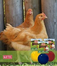 Kaytee Dispensing Toy for Chickens Asst Colors Free Shipping