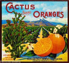 Highland Cactus Orange Citrus Fruit Crate Label Art Print