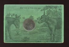 Animals DONKEYS Artist Novelty Mirror used 1900s PPC