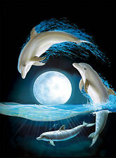Dolphin Moon Lenticular 3D Picture Animal Poster Painting Home Wall Art Decor
