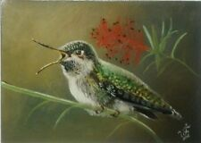 RUBY THROATED Hummingbird Original ACEO Oil Hand Painted Bird Signed by JV