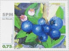 ST. PIERRE MIQUELON SPM 2003 881 759 Blueberries Art Kunst Heidelbeeren MNH
