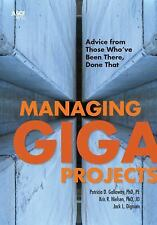 Managing Gigaprojects: Advice from Those Who've Been There, Done That