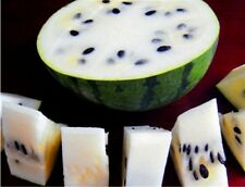 10Pcs New Variety Plant White Watermelon Seed Vegetable Organic Home Garden HK07