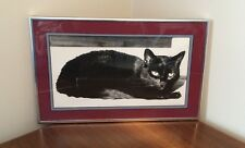 Vintage Portrait of a Cat in Black & White - Photo Professionally Framed
