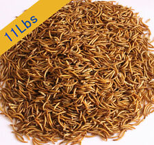 11 Lbs 100% Natural Dried Mealworms For Wild Birds Chickens Food