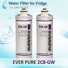 2X 2CB-GW Replacement Water Filter, 5 Micron - Everpure
