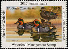 PENNSYLVANIA  #27  2015 STATE DUCK STAMP GREEN WINGED TEAL  By Gerald Putt