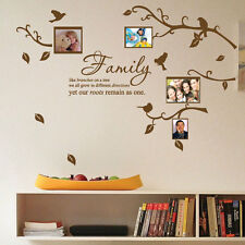 Family Tree Bird Photo Frame Nursery Art Wall Stickers Quotes Wall Decals 14