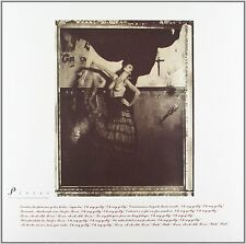 Pixies - Surfer Rosa - 180gram Vinyl LP *NEW & SEALED*