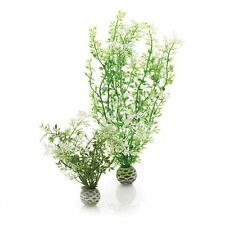 BiOrb BiUbe Easy Plant Pack Frosted Winter Flower Med.