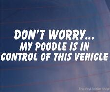 DON'T WORRY MY POODLE IS IN CONTROL OF THIS VEHICLE Funny Car/Van Dog Sticker