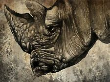 PAINTING DRAWING DESIGN SKETCH ANIMAL RHINO HEAD HORN ART PRINT POSTER MP3841A