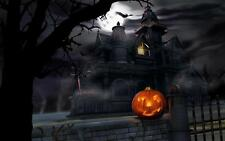 VINTAGE HALLOWEEN HAUNTED HOUSE PUMPKIN MOON BATS WICCA HOLIDAY CANVAS ART PRINT