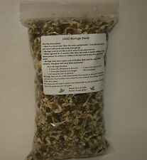 10,000 Moringa Seeds - US Customs Cleared - Paisley Farm & Crafts