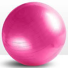 Fitness Exercise Gym Ball Yoga Core Ball 65cm Abdominal Back Leg Workout