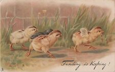 POSTCARD  ANIMALS  CHICKS  Finding is keeping !     Tuck