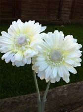 2 CREAM GERBERAS VW BEETLE, ANY CAR DASH BUD FLOWER, UNIVERSAL