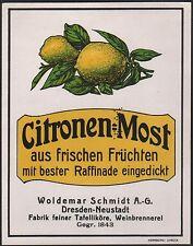 Etiqueta Citronen-most/Lemon Cider Label/etiquette de grillo/aprox. 1920 # 1648