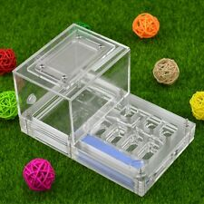 Ant Housing Nest Insect Cage Farms Feed Plastic Acrylic Display Trapezoid Box