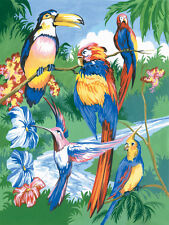 Paint by Number Kit TROPICAL BIRDS