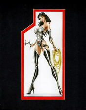 WONDER WOMAN w BATARANG PRINT PROFESSIONALLY MATTED Jamie Tyndall
