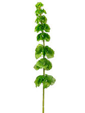 "29"" Artificial Bells of Ireland Spray Green (pack of 12) Silk Flower Wedding"