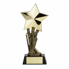 CRICKET SHOOTING STAR TROPHY MAN OF THE MATCH  24.5cm FREE ENGRAVING A1142D SS