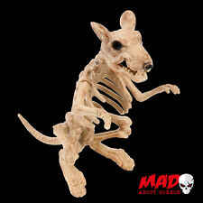 Skeleton RAT Life Size Figure - Halloween Outdoor / Indoor Decoration Prop SCARY