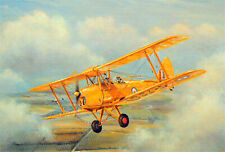 Tiger Moth Beautiful Picture Painting Bi-Plane Poster Royal Air Force Queen Bee