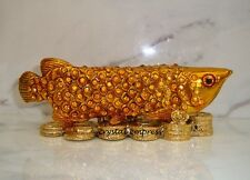 Feng Shui - 2015 Bejeweled Arowana on Bed of Coins for Wealth