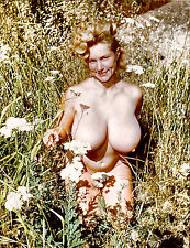1960s Nude pinup Virginia Bell sitting in tall grass 8 x 10 Photograph