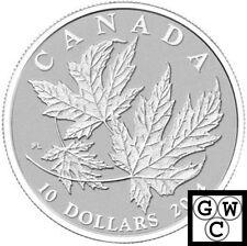 2014 'Maple Leaf' 1/2oz Specimen $10 Silver Coin .9999 Fine (13879)