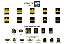 Large A3 Ranks of the Royal Navy Poster ( Military rank structure  New British