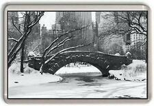 Central Park New York Fridge Magnet #1