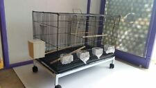 Birds Breeding cage imported - Good for Canary, finch, love birds & Dimond dove