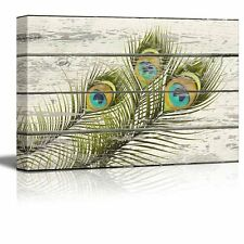 Colorful Peacock Feathers Artwork - Rustic Canvas Wall Art Home Decor - 16x24