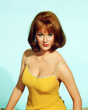 BARBARA RHOADES 11X14 PHOTO STUNNING LOW CUT YELLOW DRESS BUSTY SEXY POSE