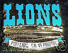 Detroit Lions Silverdome Collector Pin Hard to Find