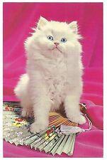 HER LADYSHIP White Fluffy CAT on Ornamental FAN Vintage Postcard Kitty PINK Blue