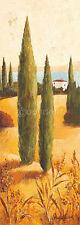 Claudia Ancilotti: Montecastello I Toskana Fertig-Bild 13x35 Wandbild