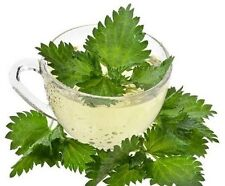 100 % Organic natural NETTLE HERBAL TEA dissolving kidney stones Antioxidants